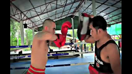 No Love Tiger Muay Thai and Mma Training Highlight Reel Phuket Thailand