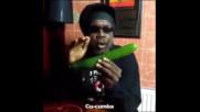 Jamaica cucumba