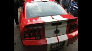 Mustang I Lamborgini