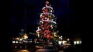 Варна - Коледа 8