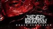 Dead infection - Brain Corrosion Full Album