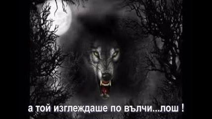 Аз обикнах ...вълк !!!