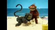 Маймуна ебач