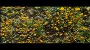 Красотата на природата, Michael Cretu - Waterfall