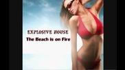 Delia Matache - The Beach is on Fire