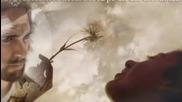 В сянката на кръста си - Paula Seling