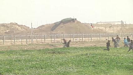 State of Palestine: Twenty injured after clashes on Israel-Gaza border - Health Ministry