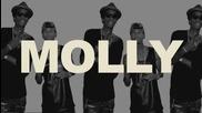 Tyga ft Wiz Khalifa and Mally Mall - Molly (new 2013)