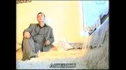 Lemi Alic i Juzni Expres 1993 - Zaplakao pasa