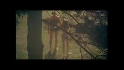 Плувецът [1968] - Театрален Трейлър