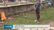 Проверяват сигнал за манипулиран вот на частичните местни избори в Мъглиж