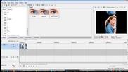 Sony vegas effect# 11 tutorial