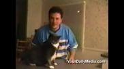 Невероятните,  приказващи котки!!!!!!!!!!!!