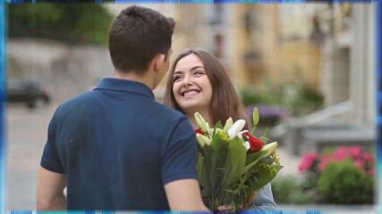 Андрей Картавцев - Запоздалые цветы