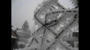 Madonna - Frozen Превод