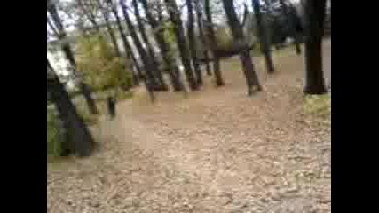 V Borisovata 3 (rado)