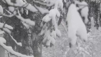 Силен вятър навява снега