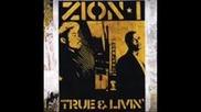 Zion I - Birds Eye View