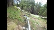 Скоростна разходка из гората