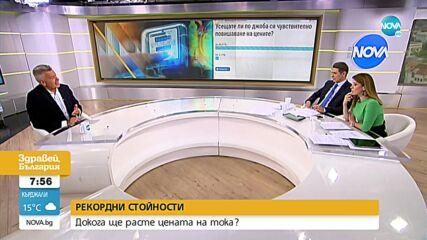 Красимир Дачев: Икономиката компенсира ниската цена на тока за населението