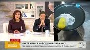 Експеримент: В Кнежа счупено яйце замръзва за секунди