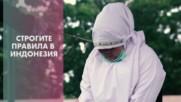 Индонезия с камшици по гей двойките