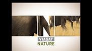 Viasat Nature - Дивият свят на животните