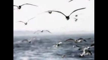 Waves - Biscaya - James Last