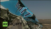Egypt: Russian delegation visits plane crash site in the Sinai