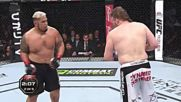 Ufc - Mark Hunt vs Roy Nelson