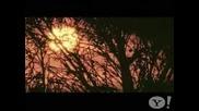 Enrique Iglesias - Donde Estan Corazon [official Video 2008]