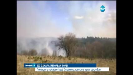 Изцяло е загасен пожарът в Благоевградско