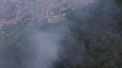 Пожар в боровата гора над Пирдоп