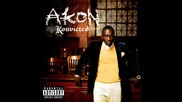 Akon Ft Diddy, Luda - Get Buck In Here