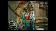 Вива Училищен Мюзикъл Мексико Бг Аудио 11 част