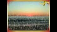 Whitesnake - Summer Rain (2008)