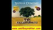Toygar Isikli Gozyasi Agit Yaprak Dokumu музика от филма листопад