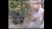Компилация Смях - Хора И Животни
