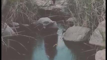 (превод + текст) Bishop Briggs - River