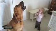 Дует на дете и куче