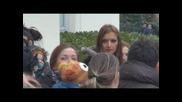 Красимир Вълев Националният протест на бебешките колички
