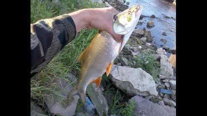 Spinning Fishing 2011