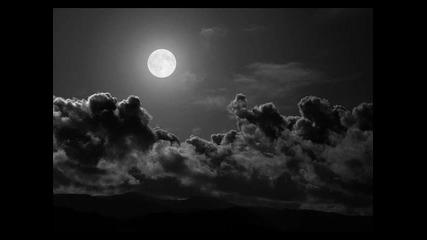 Yann Tiersen Summer night's dreams