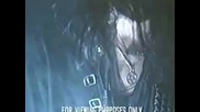 Liers In Wait - Maleficent Dreamvoid (1991)