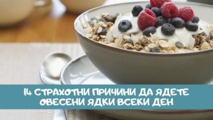 14 страхотни причини да ядете овесени ядки всеки ден