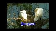 Елена Ваенга и Ал. Малинин - Две Души...