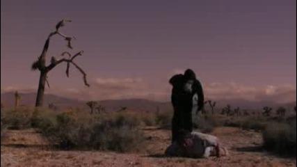 Жестоко убийство с лъжица!!!
