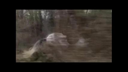 Coco Chanel - Hush Hush ( I will survive) - Pussycat Dolls