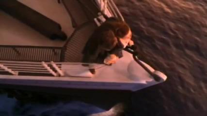 Превод! Celine Dion - My Heart Will Go On ( Titanic ) * H Q *
