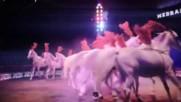 В  цирк  ,, Медрано ,, Италия ( In circo  ,, Medrano ,, ITALIA )